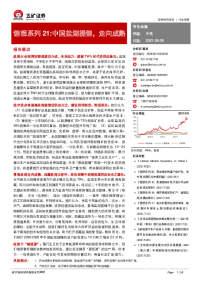 有色金属行业锂想系列21:中国盐湖提锂,走向成熟