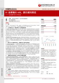 安琪酵母点评报告:Q1业绩增长46%,提价顺利推进
