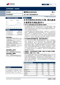 2021年第一季度业绩预告点评:扣非利润同比和环比大增,股权激励方案彰显长期发展信心