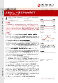 乐歌股份深度报告:定增助力,中国品牌出海添新军